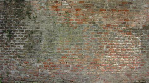 wall with wall brick texture buscar con walls