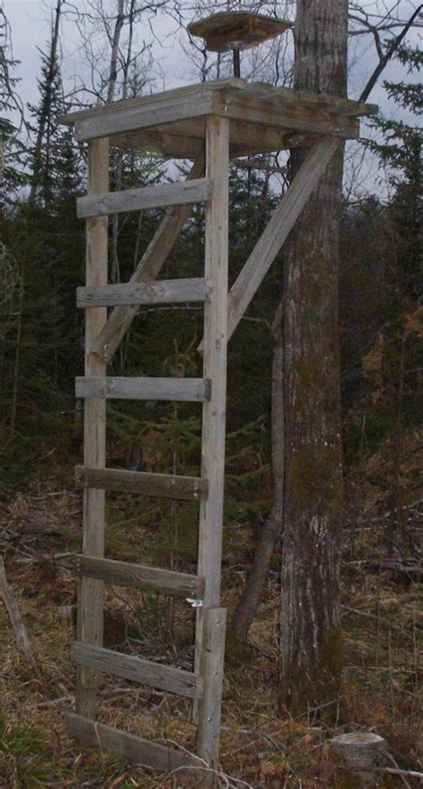 the best tree stand 17 best ideas about tree stands on