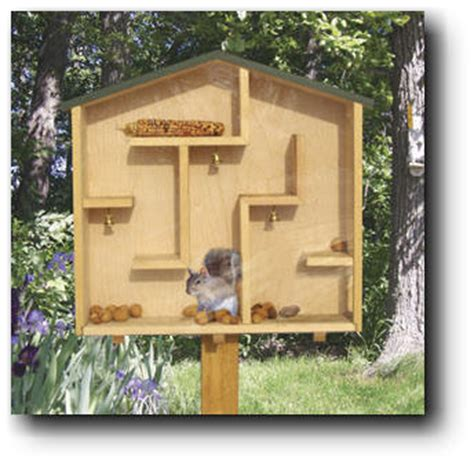 home woodwork projects a mazing squirrel house woodworking plans