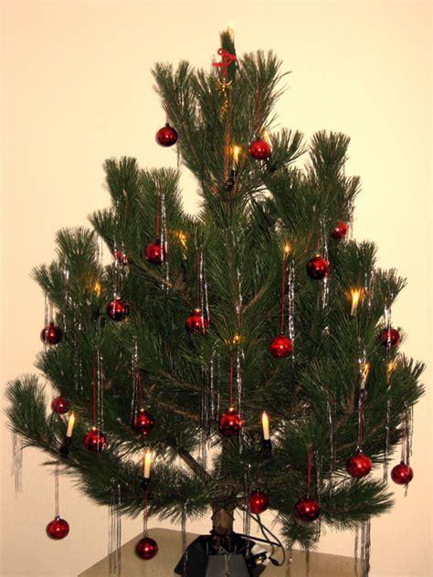 datei weihnachtsbaum kiefer jpg
