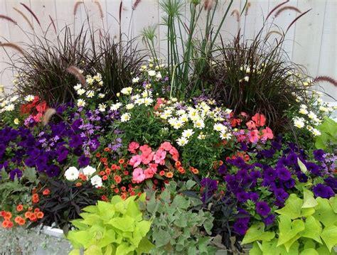 garden flower ideas container flower gardening in florida ideas home