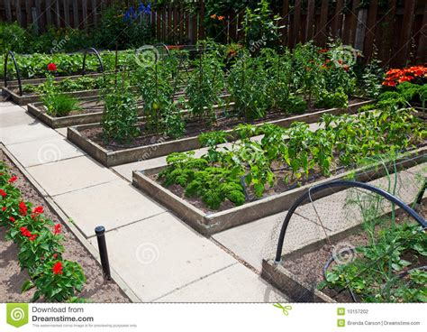 raised vegetable garden beds stock photography image