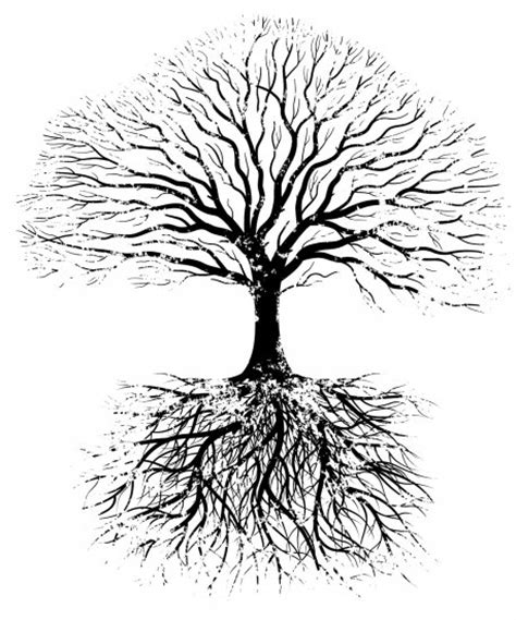 tree symbolism the symbolism of trees