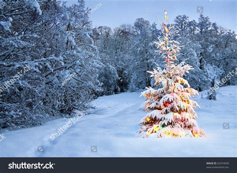 fashioned colored lights tree in snow with colored lights stock photo