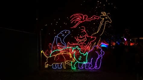 zoo lights ticket prices denver zoo lights 2013 undefeated