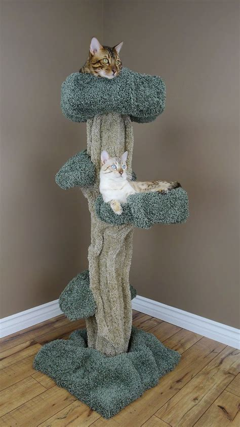 cats real trees 5 awesome cat trees that look like trees purrfect cat breeds