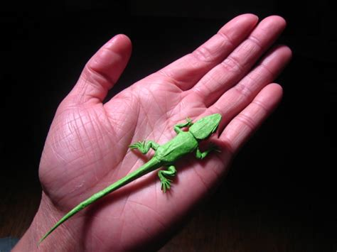 origami lizard diagram pin origami lizard diagram index of images on