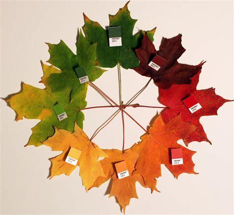 glass leaf nasa climate make a stained glass leaf