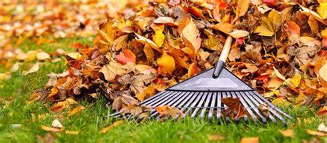 Der Garten Im Oktober by Der Garten Im Oktober Was Jetzt Zu Tun Ist Ratgeber