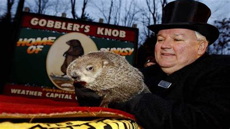 groundhog day live 2016 how to groundhog day prediction 2016 live