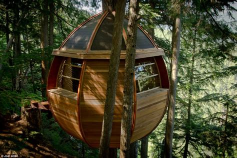 treehouse house a treehouse viral price tags