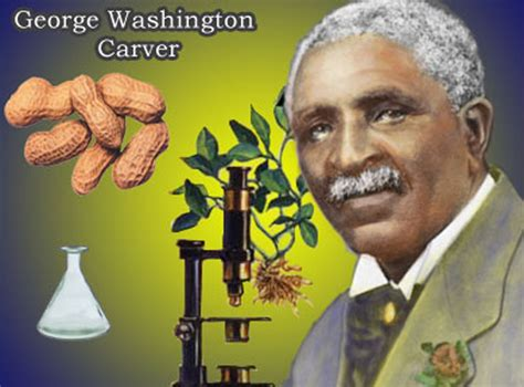 a picture book of george washington carver matter paradigm black history george washington