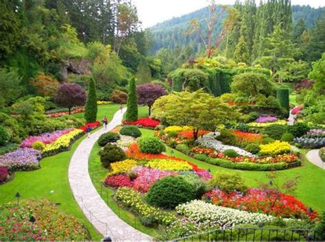 how to create a flower garden tips to create a flower garden flowers