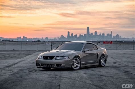 2003 Ford Mustang Cobra by 2003 Ford Mustang Cobra Quot Terminator Quot Ccw Sp505 Forged Wheels