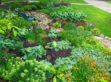 the vegetable garden the vegetable garden ideas for your gardening inspiration