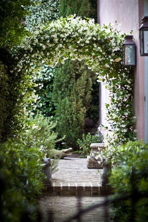 Garden Arch Vines 25 Best Ideas About Garden Arches On Garden