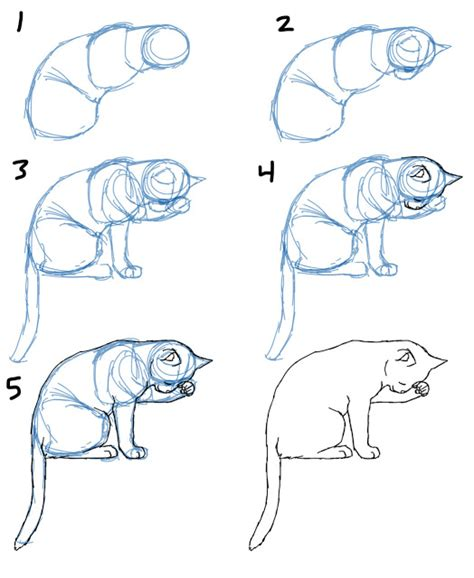 how to draw bodies savanna williams how to draw cat bodies in poses