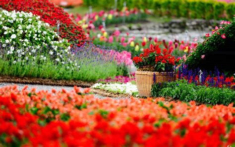 images of beautiful flower gardens lush greenery pictures beautiful gardens wonderwordz