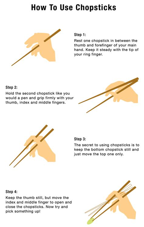hiw to use learn how to use chopsticks and how to catch flies