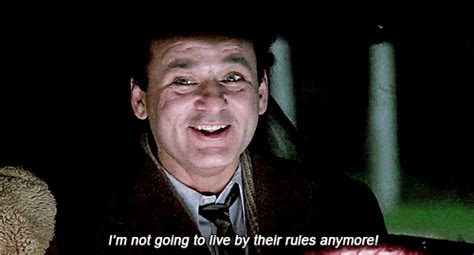 groundhog day imdb quotes groundhog day quotes gifs
