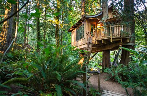 treehouse house treehouse point