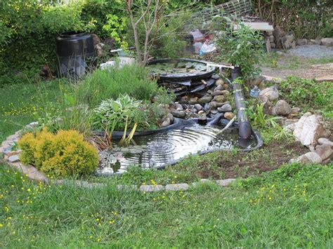 building backyard pond turn your backyard into a fish farm raise tilapia at