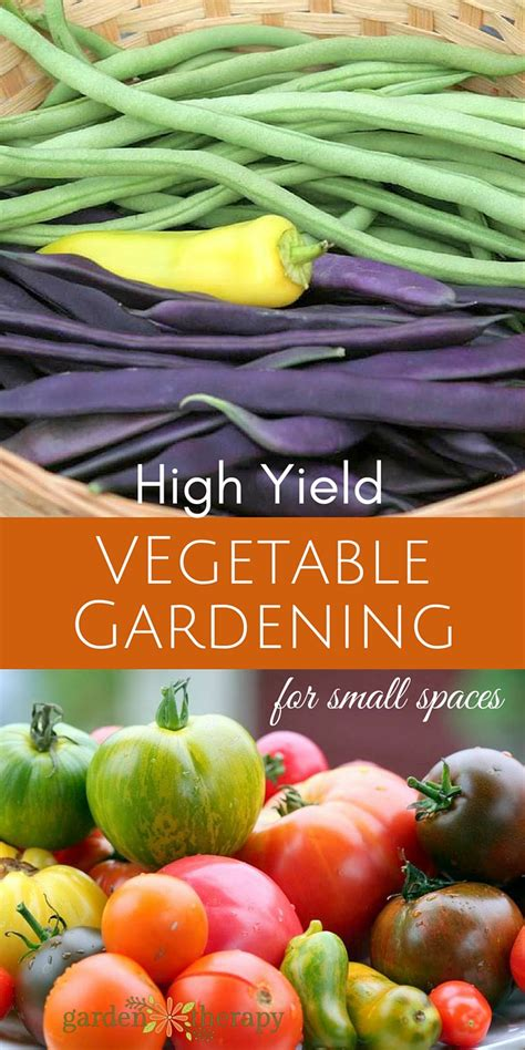 high yield vegetable garden the secrets to high yield vegetable gardening in small