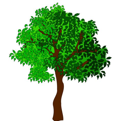 trees clipart free to use domain trees clip page 4