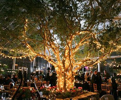 tree lighting ideas 13 unique ideas to use at your next outdoor