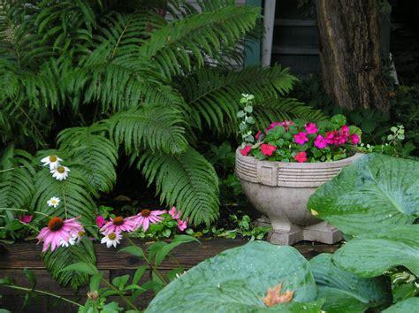 flowers shade garden shade garden wikiwand