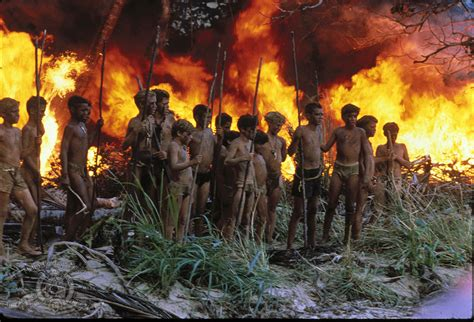 lord of the flies the lord of the flies apperance vs reality