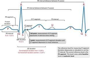 interpretation characteristics of the normal p