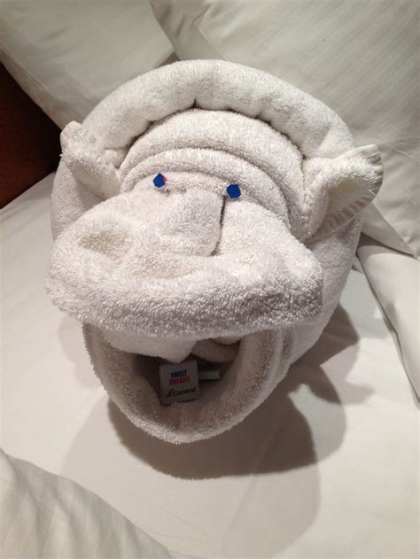 towel origami animals 1000 ideas about towel animals on towel