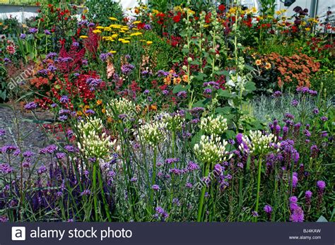 garden flower borders a colourful herbaceous flower border in a country