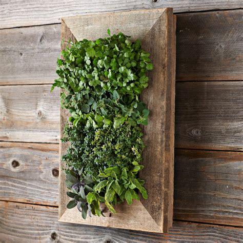reclaimed barn door vertical wall planter the green