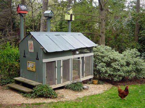 backyard chicken coup chicken coops for backyard flocks hgtv