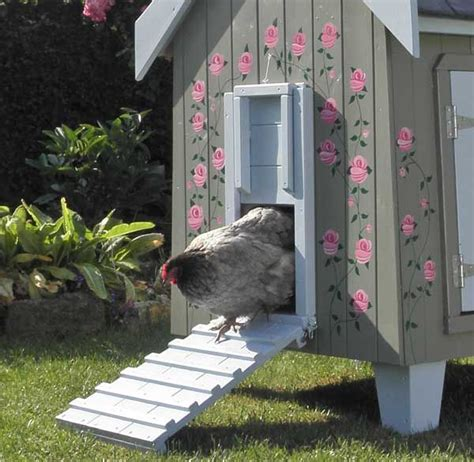 backyard chicken houses best 20 hen house ideas on chicken coops