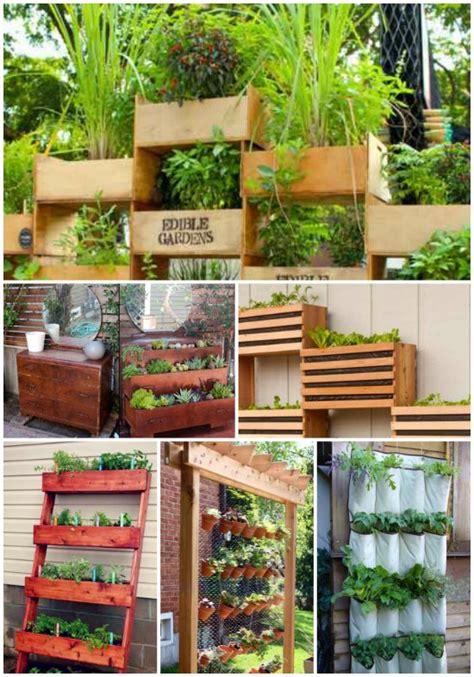 home vertical garden 16 vertical garden ideas for your home
