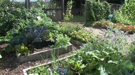garden vegetable moved permanently