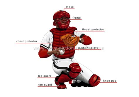 what do the in a catcher sports sports baseball catcher image