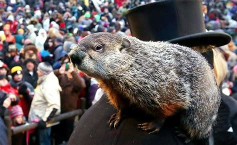 groundhog day today marks the 131st annual groundhog day 98 7 the bull