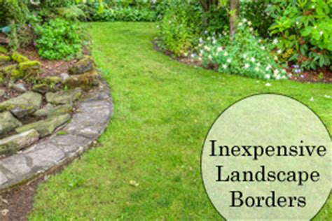 cheap trees canada inexpensive landscape borders