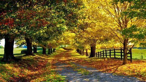 for fall autumn season seasons