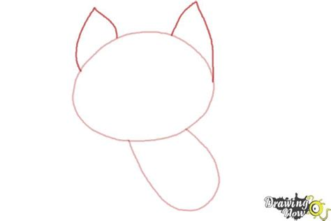 cat step by step how to draw a cat step by step drawingnow