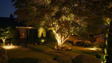 expert landscape lighting the importance of landscape lighting icanxplore lighting ideas