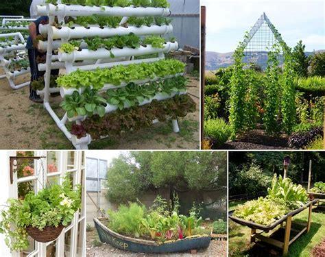 amazing vegetable gardens unique vegetable gardening ideas photograph amazing interi