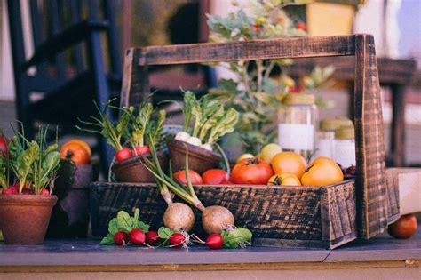 tips for planting a vegetable garden tips for planting a vegetable garden avas flowers