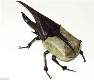 origami hercules beetle the most amazing origami artist creates detailed