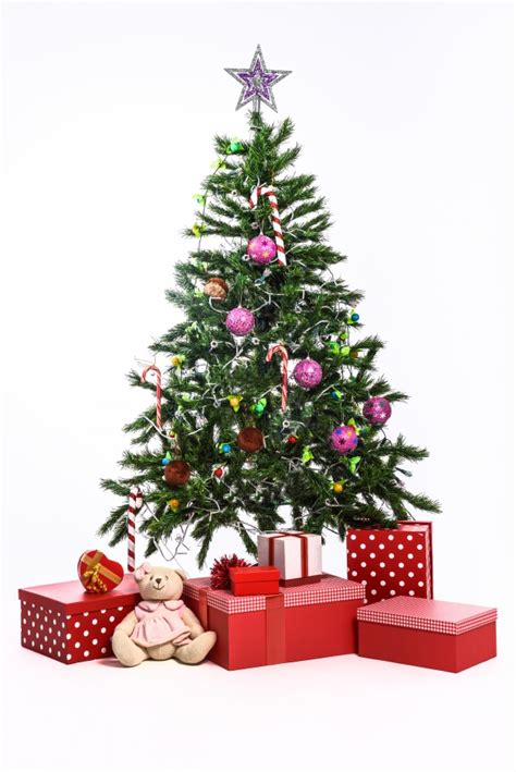 tree on white tree with gifts on white background photo free