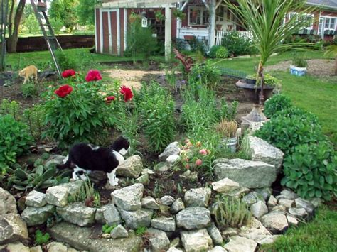 about rock garden 17 best images about rock garden ideas on